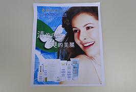 PVC դրոշակը տպագրվել է 3.2 մ (10 ֆունտ) Էկո վճարունակ տպիչ WER-ES3201