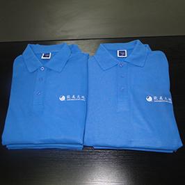 Polo- ի վերնաշապիկը պատվերով տպագրված նմուշ է A3- ի T-shirt տպիչով WER-E2000T